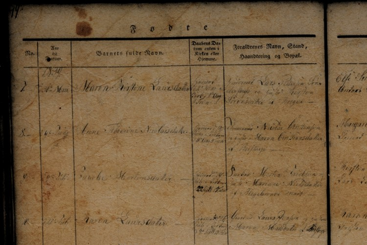 19th Century Birth Record from a Danish Market Town