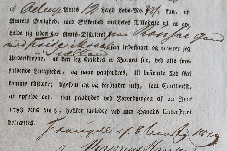 Danish County Records: Letter of Guarantee for a Removed Reserve Soldier