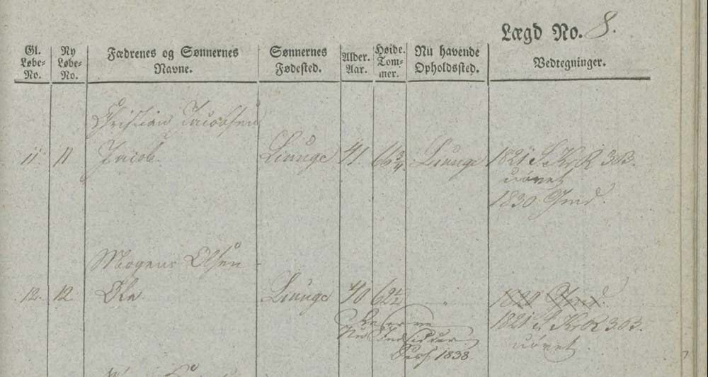 Snippet of 1838 military levying roll from the Sorø county, Denmark